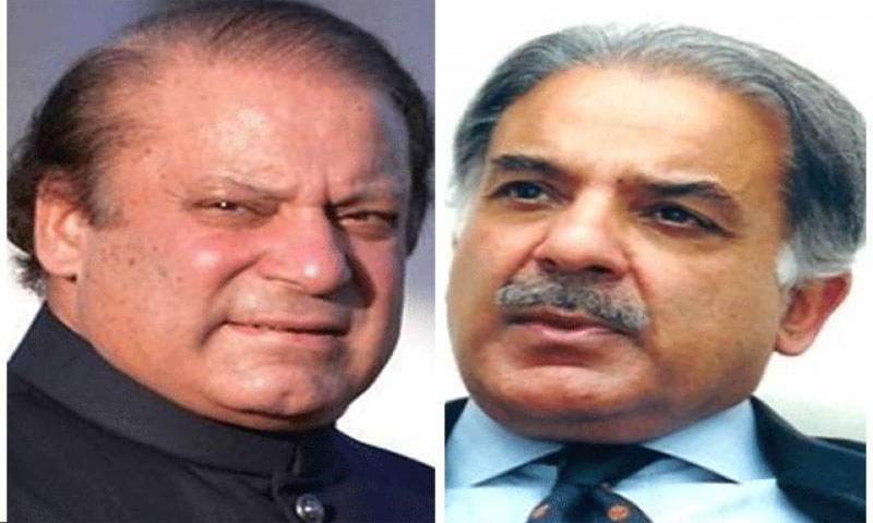 Petition seeking PM Nawaz, CM Shehbaz's disqualification rejected
