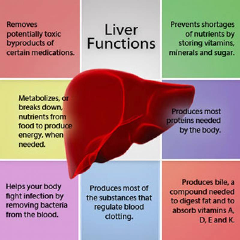 6 common symptoms of Liver damage