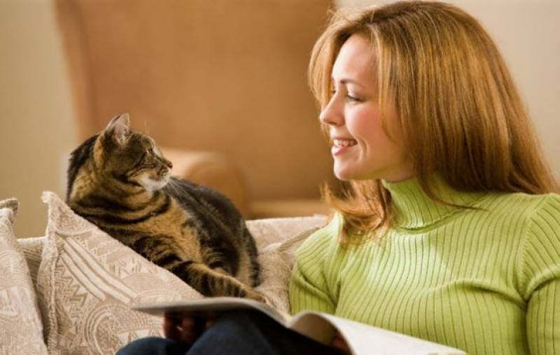 Pets may help owners maintain mental health condition