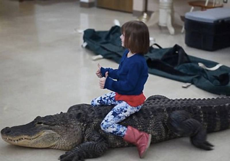 Watch: Clip of child riding an alligator goes viral