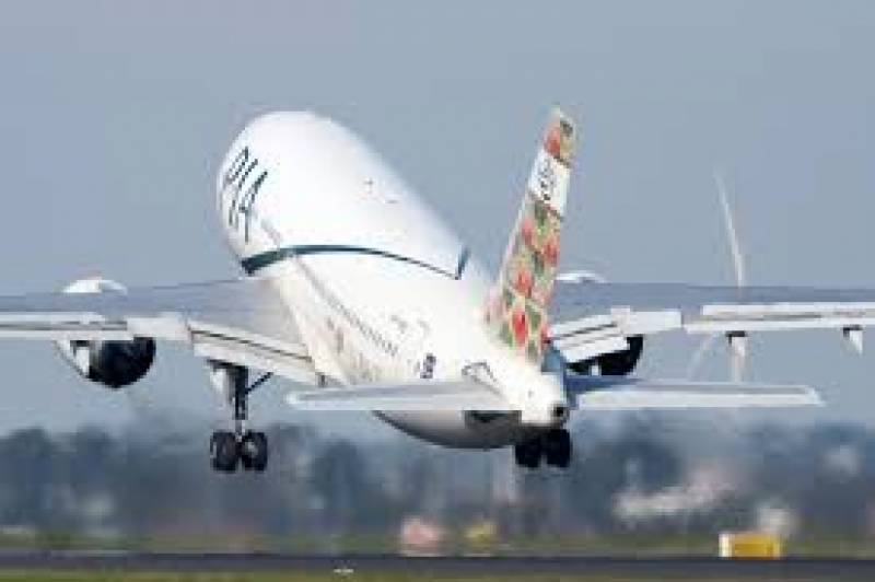 Pilot, passenger scuffled over toilet seat