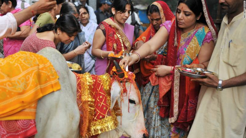 Nationwide ban on cow slaughter denied by India's top court