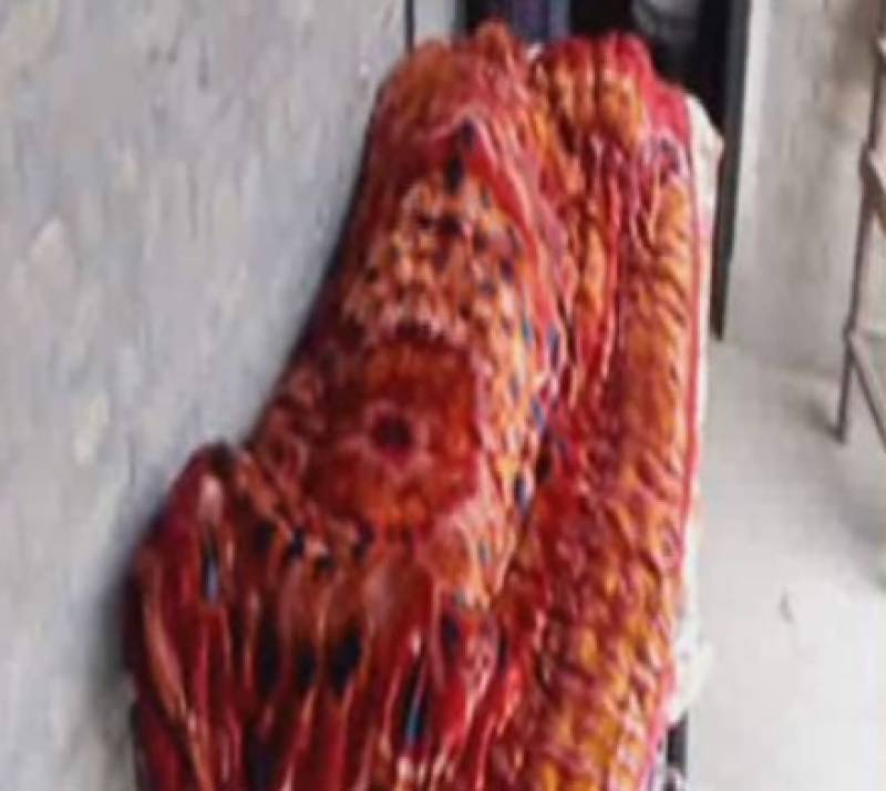 Woman burnt alive in Mansehra