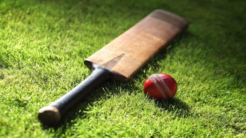 A thrown stump by angry batsman kills fielder