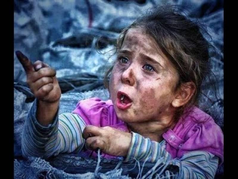 Berlin Film Festival, Syrian films win hearts