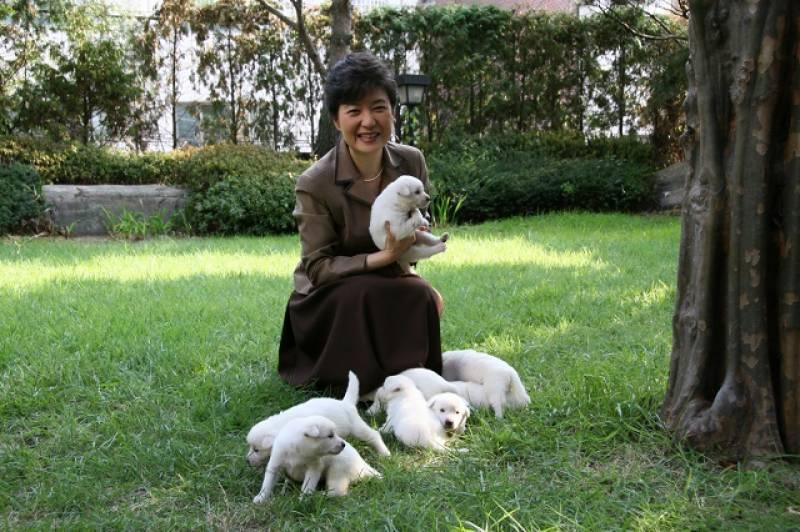 S. Korea's ex-president hounded over dumped dogs