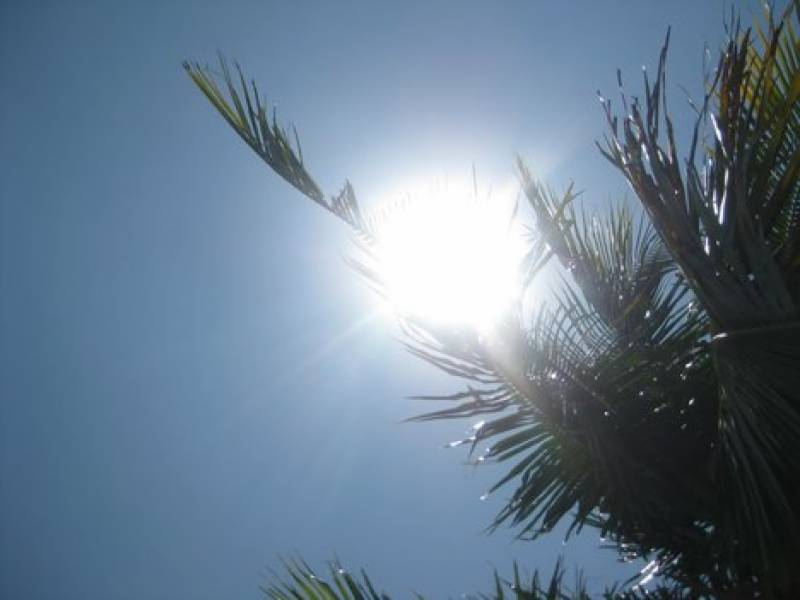 Hot, dry weather likely to prevail in country: Met