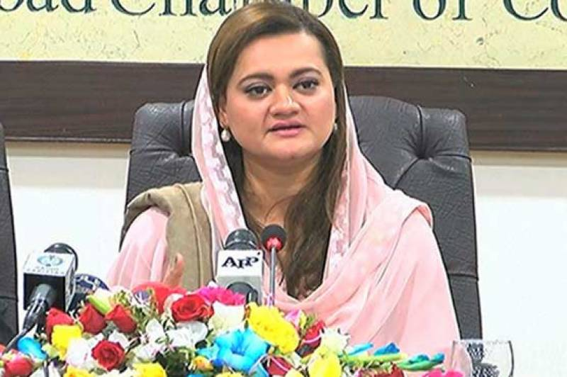 Settlement of Dawn Leaks issue 'victory for Pakistan': Marriyum
