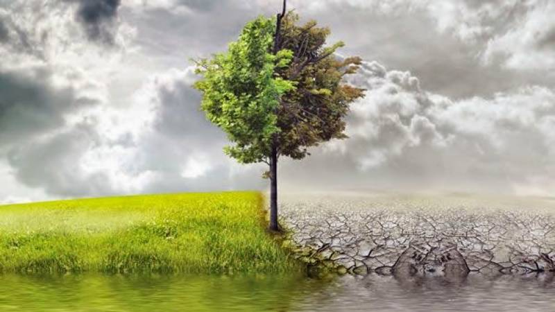World Day to Combat Desertification and Drought being observed on 17 June