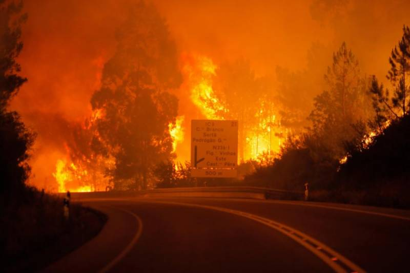 Forest fire leaves 57 dead, many killed in cars