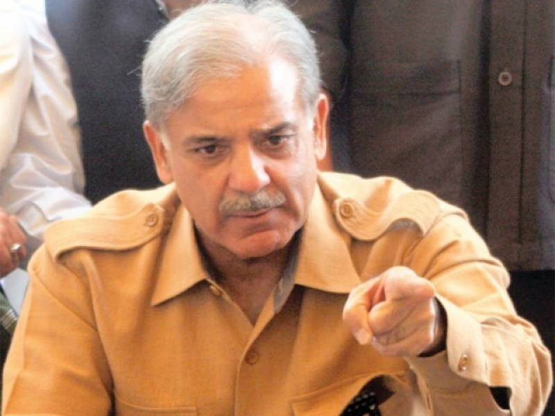 PTI files disqualification reference against Shehbaz Sharif