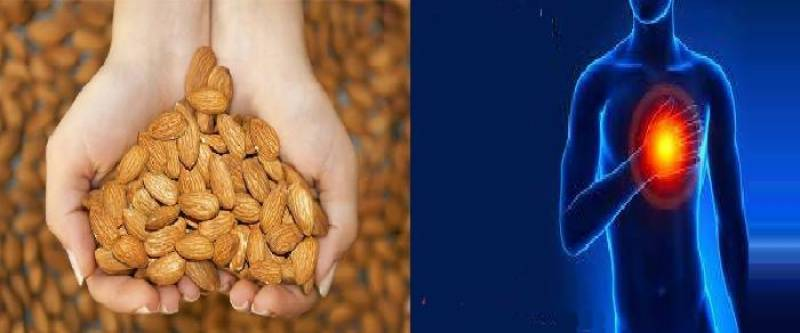 Almonds, a source of 'good' cholesterol to prevent heart disease