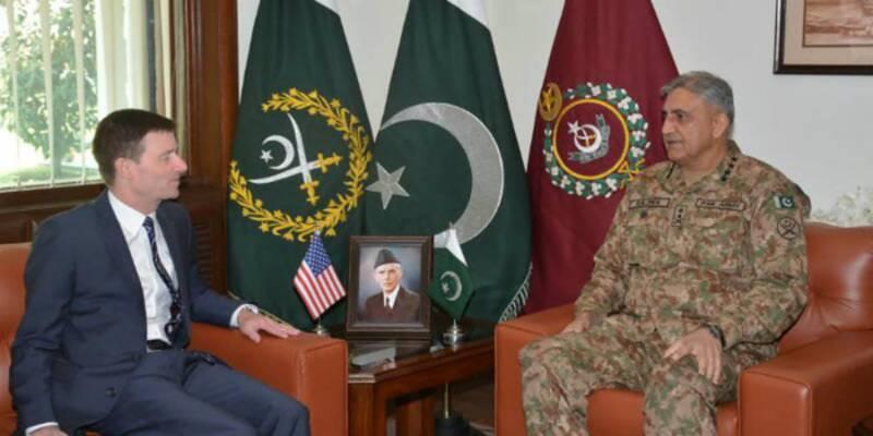 US values Pakistan's contribution to war against terrorism: David Hale