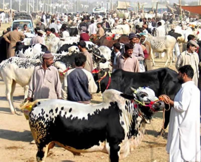 2nd day of Eid-ul-Azha celebrated across country