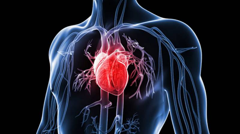 Low calcium intake can cause Heart Attack