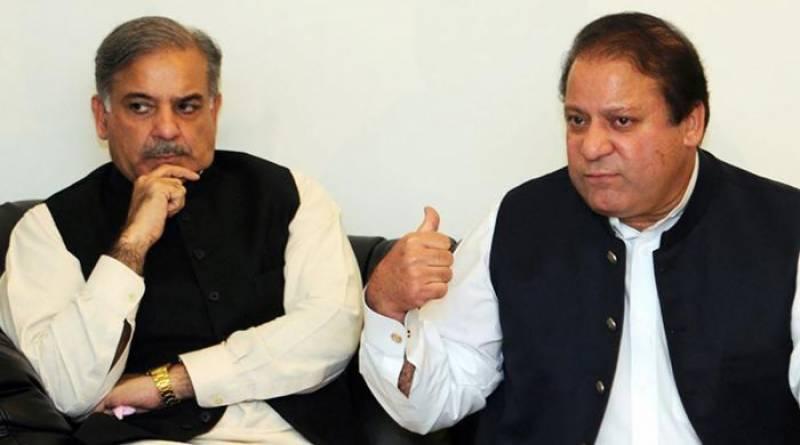 Shehbaz Sharif appointed as PML-N interim president