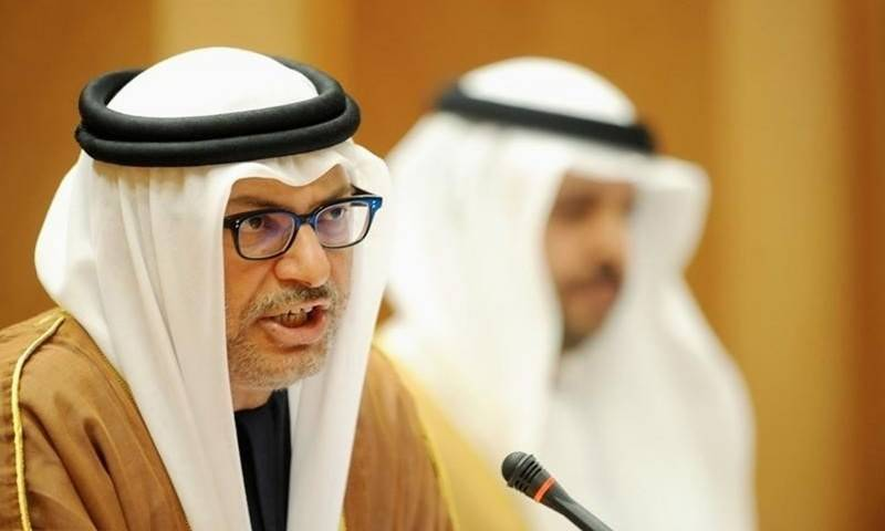 Turkey-Arab relations 'not in best state': UAE minister
