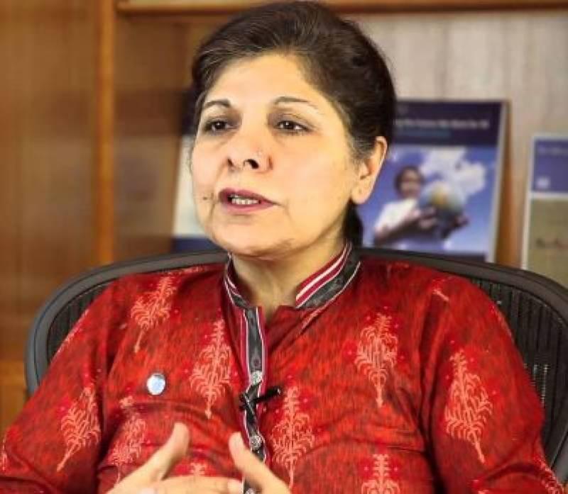 Caretaker FM to plead Pakistan's case in FATF meeting