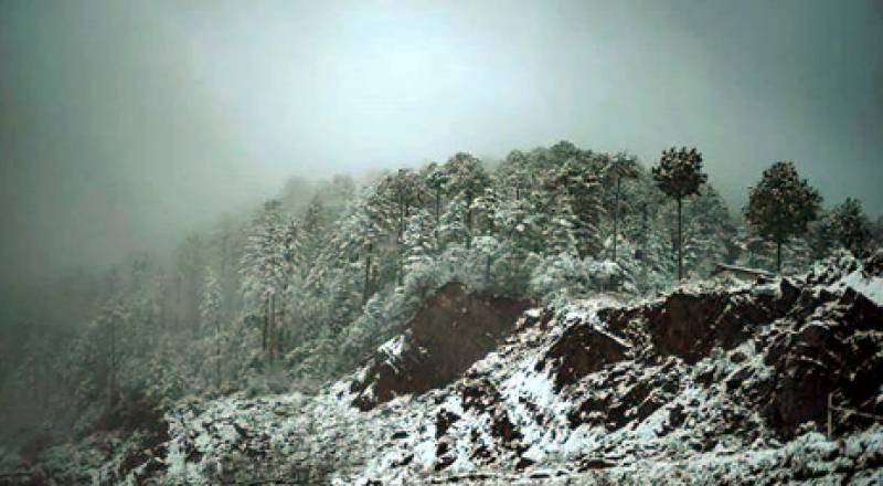 Seven trapped in Kohistan mountains after heavy snowfall rescued