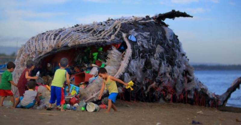 Dead whale washed up in Philippines had 40kg of plastic in stomach