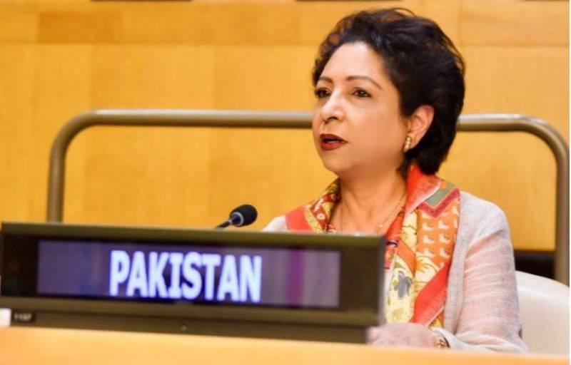 Pakistan calls for UN action to combat Islamophobia, hate speech