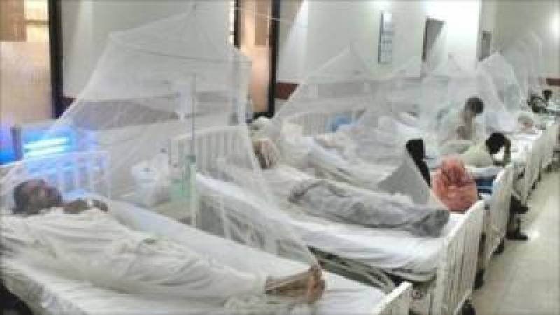Dengue victim count may soar as over 10,000 test positive