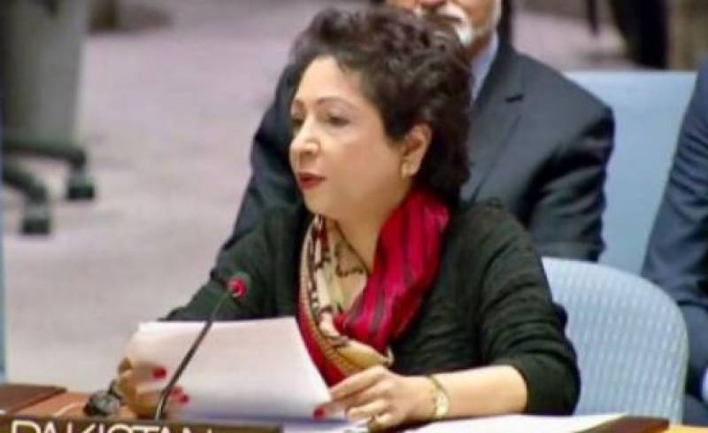 Pakistan urges world community to protect Kashmiris particularly children in IOK