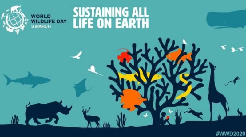 World Wildlife Day 2020 observed