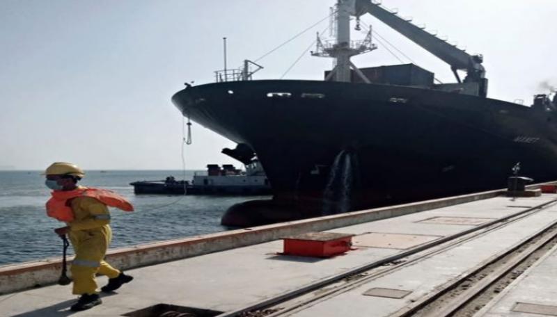 First bulk cargo ship arrives at Gwadar port under Afghan Transit Trade: Asim Bajwa