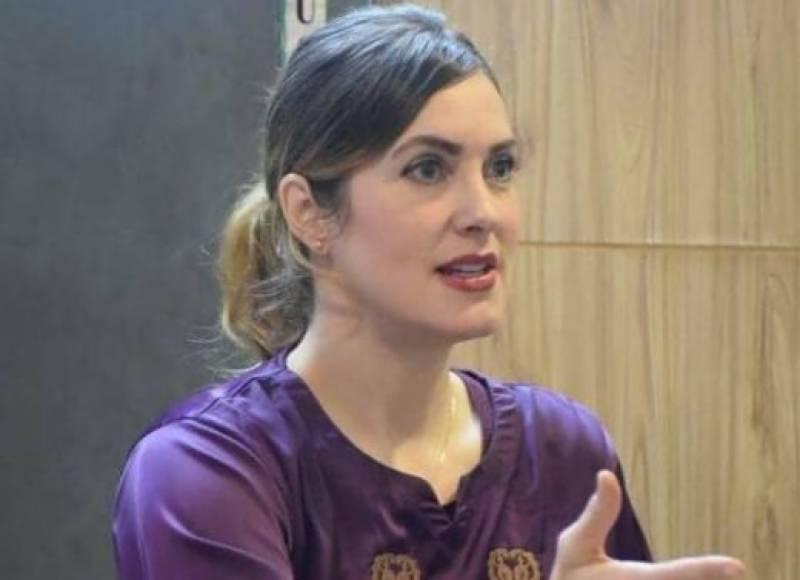 American blogger Cynthia Ritchie accuses PPP's Rehman Malik of rape