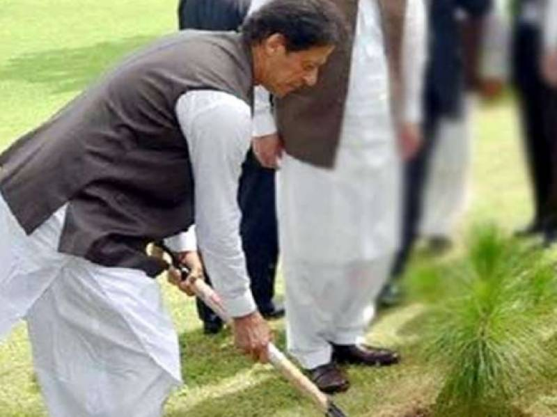PM Imran urges Pakistanis to join tree plantation campaign
