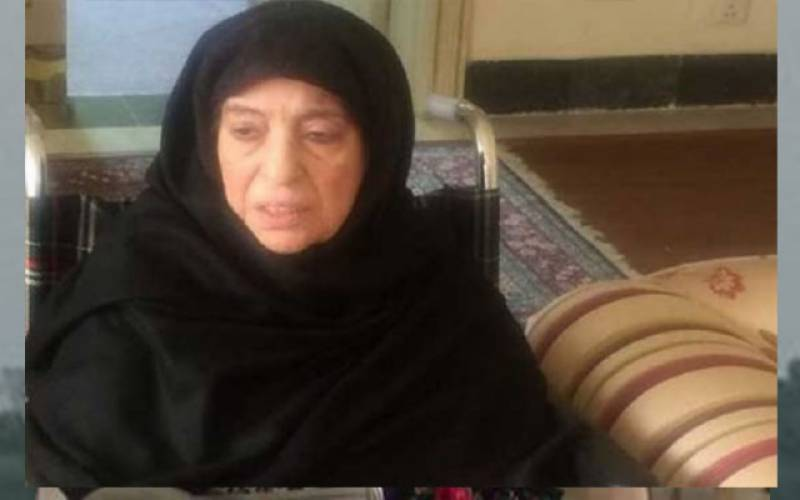 Nawaz, Shehbaz Sharif, pmln