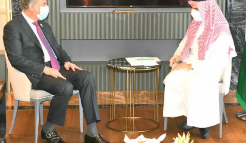 Qureshi, Saudi, counterpart, OIC, neo tv, Pakistan