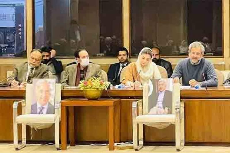 pmln, contest, senate elections, maryam, nawaz, neo tv