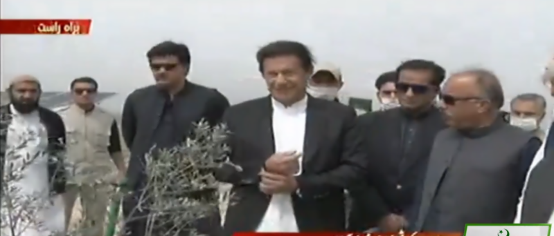 PM Imran launches olive plantation drive in Nowshera