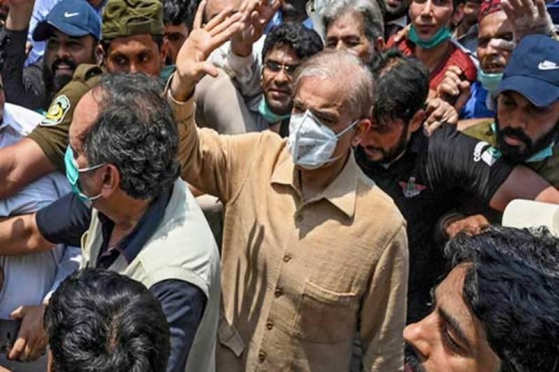 Money laundering case: LHC grants bail to Shehbaz Sharif