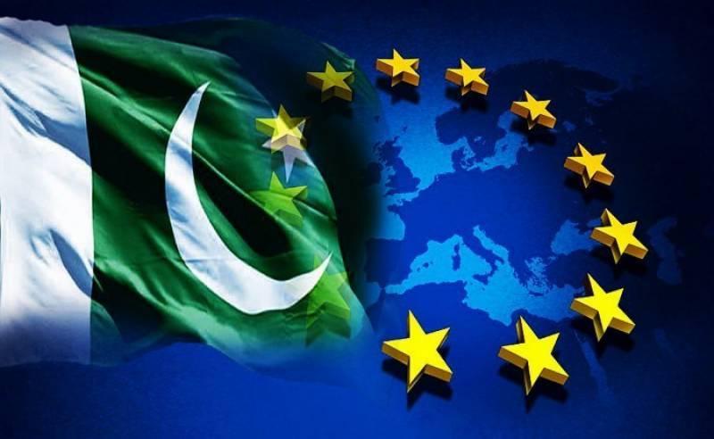eu parliament, resolution, pakistan, gsp , status, neo tv