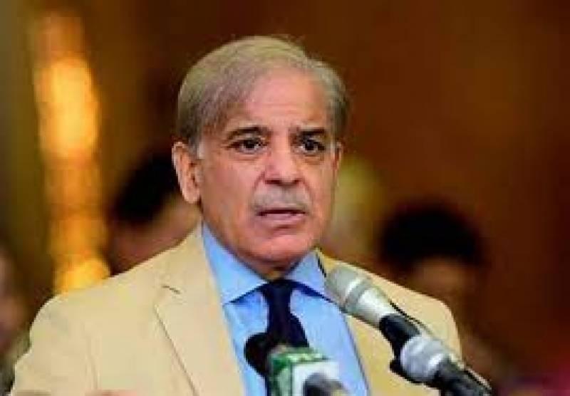 nab, shehbaz sharif, bail, court, lhc, neo tv