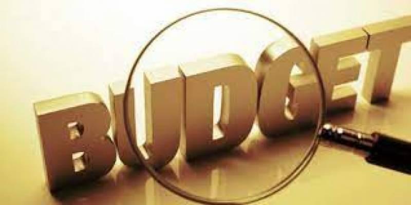 pti, govt, fy, budget, friday, neo tv