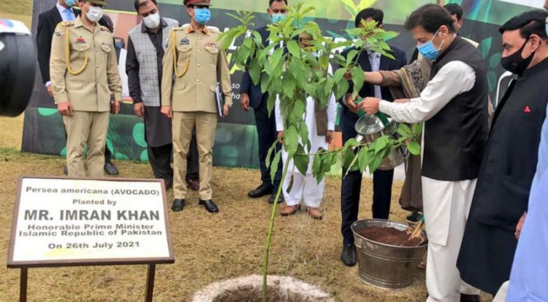 PM Imran kicks off countrywide monsoon plantation drive