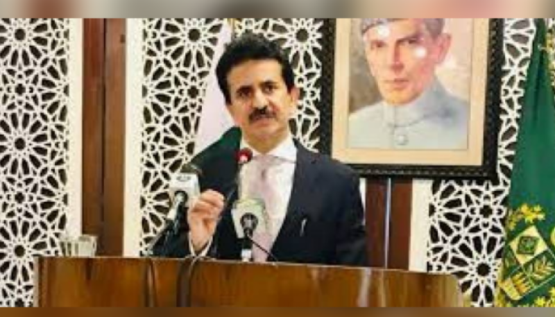 Pakistan hails EU Parliament members' letter on worsening IIOJK situation