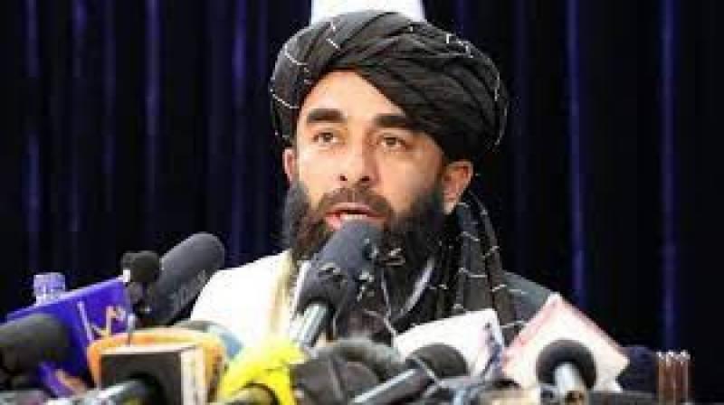 Taliban spokesperson lauds PM Imran Khan's efforts for peace in Afghanistan