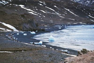 Warmer oceanic water causes Antarctic's Glacier melting rapidly: Scientists