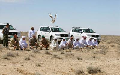 Arab houbara bustard hunters' convoy attacked in Panjgur