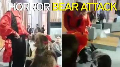 Watch: Bear attacks female host in live TV show