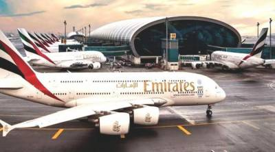 Snake found on Dubai-bound Emirates flight