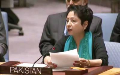 Diplomacy is the only solution to unresolved issues of the world: Maleeha Lodhi