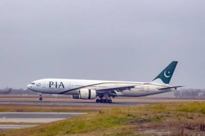 Italy-bound PIA plane lands safely after bird strike