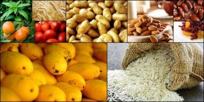 USAID helps promote Pakistani agricultural exports