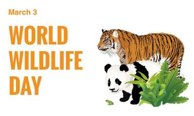 World Wildlife Day being observed today